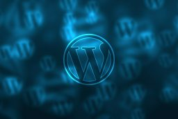 Top 5 WordPress Tips