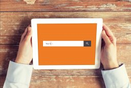 Search engine optimization Friendly Blogs Are the Most Popular