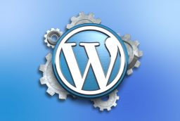 Taking Your WordPress Website To The Next Level