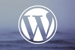 Guaranteed SEO Benefits With WordPress Plugins