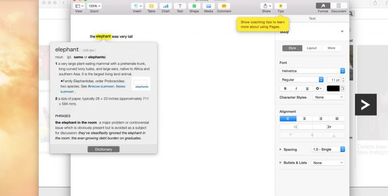 A Beginner's Guide to Mac: Using Expose to Save Time Switching Between Files and Applications