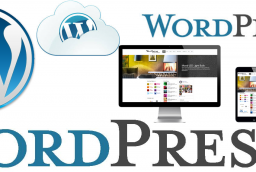 Why Design Websites in WordPress?