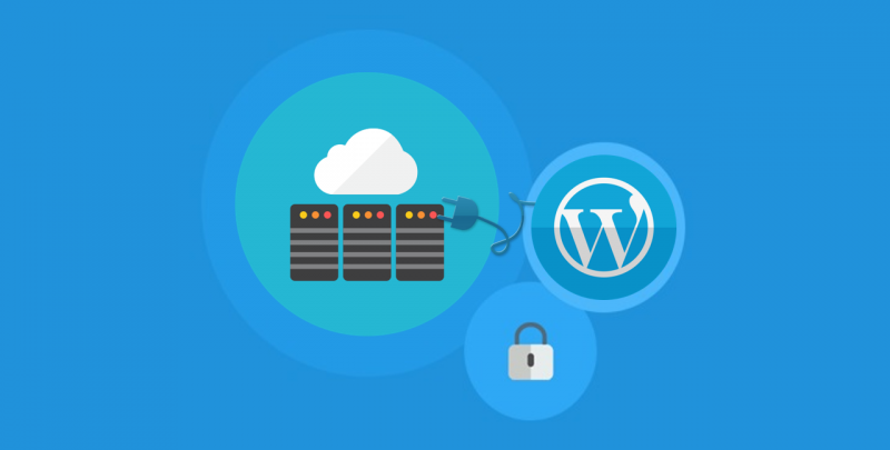 7 WordPress Troubles and Their Solutions